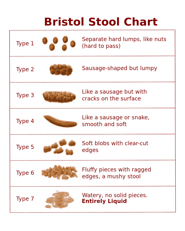 Bristol Stool Chart graphic by Kyle Thompson