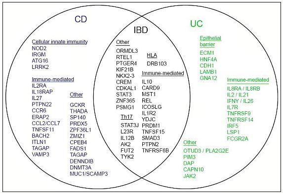 IBD Genes