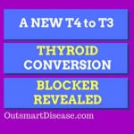 T4 and T3 thyroid conversion